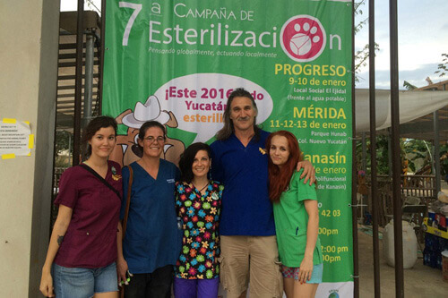 Spay and Neuter Campaign, PPI Mexico